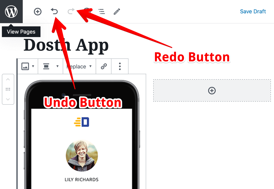 The Undo and Redo options